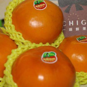 台灣甜柿1