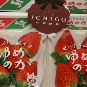 長崎草莓2