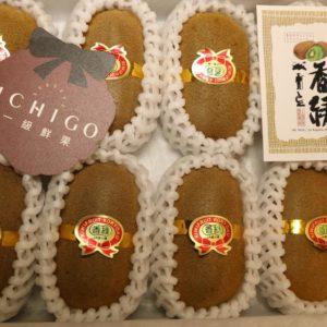 香川香綠奇異果5