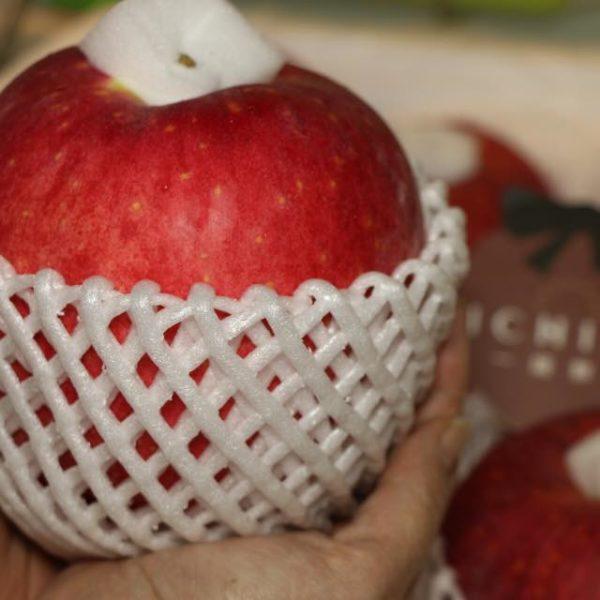 世界一蘋果2