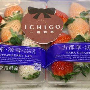 古都花三色草莓2