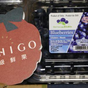 空運有機藍莓1